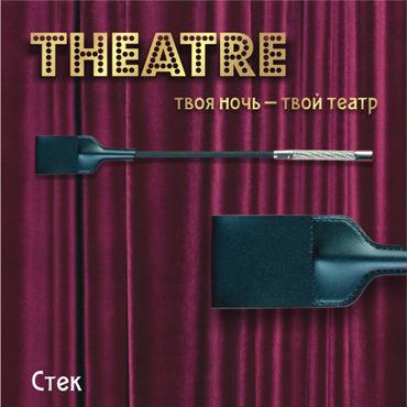 ToyFa Theatre Стек С большим шлепком с накладки на соски цвет серебристый