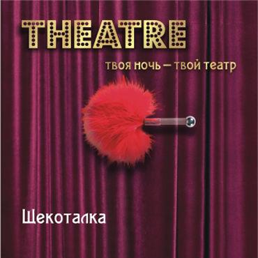 ToyFa Theatre Щекоталка, красная С короткой рукояткой комплект бондажный toyfa theatre черно серебристый