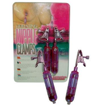 Dream toys виброклипсы Для груди you2toys nipple clamps with chain фиолетовые зажимы на соски