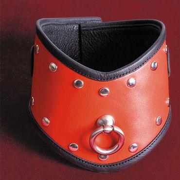 Toyfa-leather ошейник, красный Кожа, с заклепками podium намордник черный с металлическими заклепками