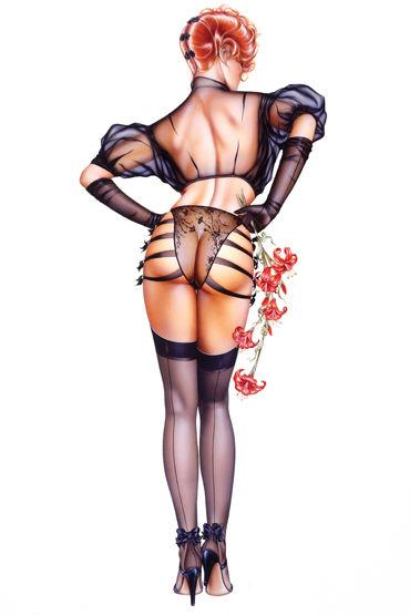Shirley комплект ''Прикоснись, подразни'' Сексапильное полупрозрачное белье shirley комплект черный список