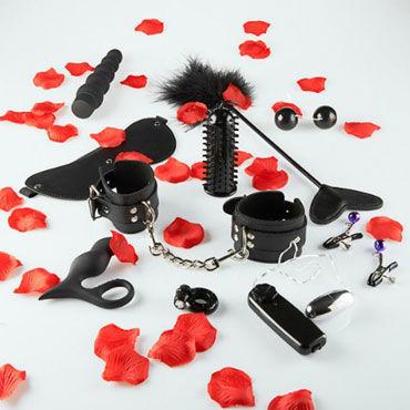 Toy Joy Lovetoy Starter Kit Подарочный набор из десяти секс-игрушек dolce piccante сорочка черная с кружевным лифом