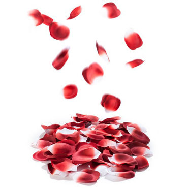 Bijoux Indiscrets Rose Petal Explosion, красные Лепестки роз ароматизированные erolanta пеньюар и стринги белые с кружевной каймой