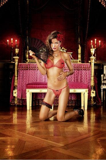 Baci комплект, красно-черный Лиф и стринги с разрезами forplay lingerie комплект черный прозрачный с ажурным узором в виде губ
