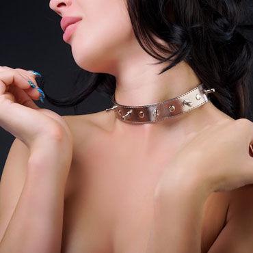 Sitabella Ошейник золотистый С металлическими клепками sitabella ошейник белый широкий с шипами и поводком